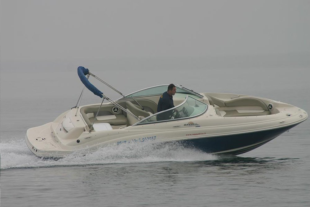 Sea Ray 220 SD – VENDUTA